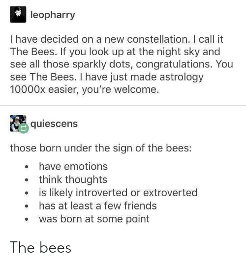 Bees: The bees