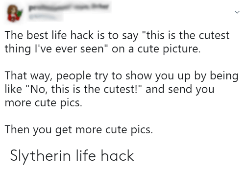 """Slytherin: The best life hack is to say """"this is the cutest  thing I've ever seen"""" on a cute picture.  That way, people try to show you up by being  like """"No, this is the cutest!"""" and send you  more cute pics.  Then you get more cute pics. Slytherin life hack"""
