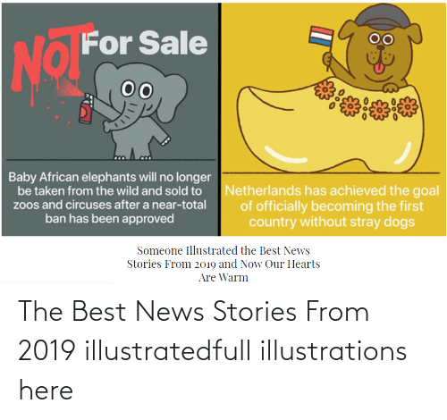 warm:   The Best News Stories From 2019 illustratedfull illustrations here