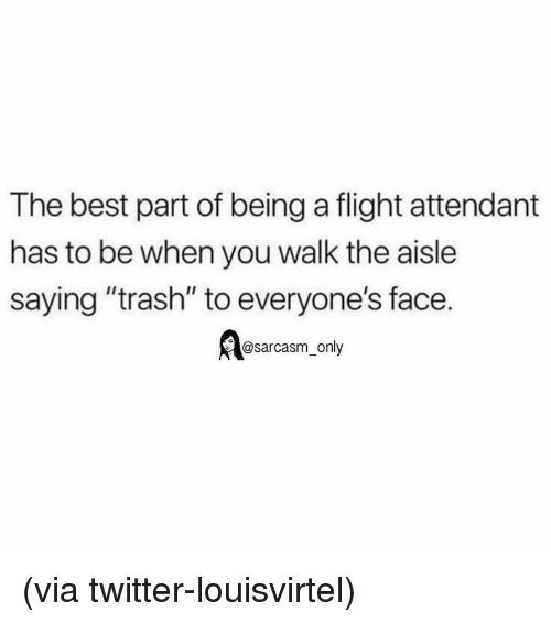 "Funny, Memes, and Trash: The best part of being a flight attendant  has to be when you walk the aisle  saying ""trash"" to everyone's face.  @sarcasm_only (via twitter-louisvirtel)"