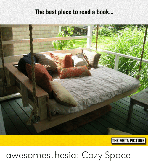 Tumblr, Best, and Blog: The best place to read a book...  THE META PICTURE awesomesthesia:  Cozy Space