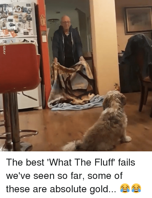 Dank, Best, and 🤖: The best 'What The Fluff' fails we've seen so far, some of these are absolute gold... 😂😂