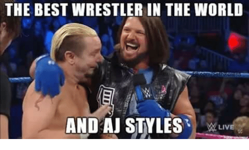 World Wrestling Entertainment, Best, and World: THE BEST WRESTLERIN THE WORLD  AND AJ STYLES  LIV