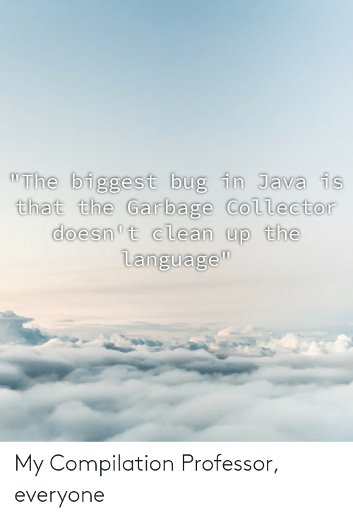 "Biggest: ""The biggest bug in Java is  that the Garbage Collector  doesn't clean up the  language"" My Compilation Professor, everyone"