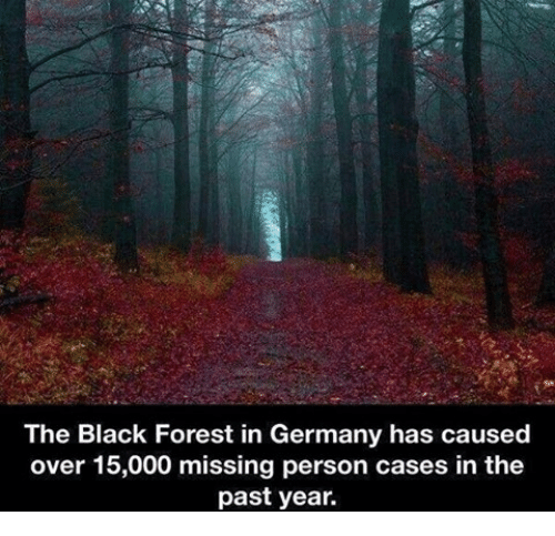 Missing Person: The Black Forest in Germany has caused  over 15,000 missing person cases in the  past year.