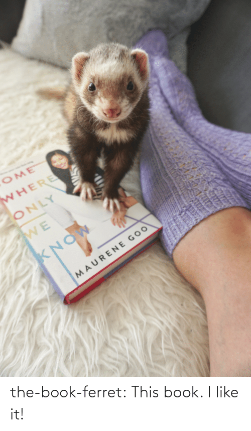 Book: the-book-ferret:  This book. I like it!
