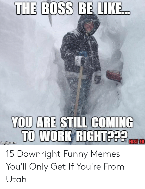 Be Like, Funny, and Memes: THE BOSS BE LIKE  YOU ARE STILL COMING  TO WORK RIGHT  FAST ED  imgfip.com 15 Downright Funny Memes You'll Only Get If You're From Utah