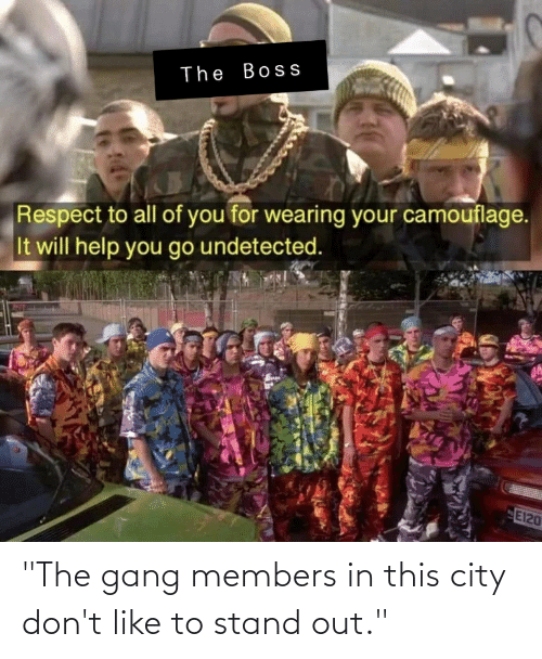 "Respect, Gang, and Help: The Boss  Respect to all of you for wearing your camouflage.  It will help you go undetected.  E120 ""The gang members in this city don't like to stand out."""