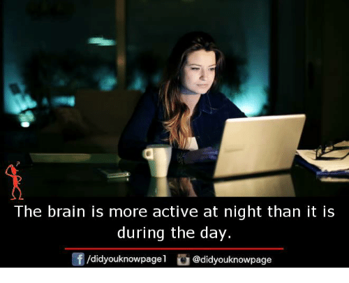 Memes, Brain, and 🤖: The brain is more active at night than it is  during the day.  /didyouknowpagel @didyouknowpage