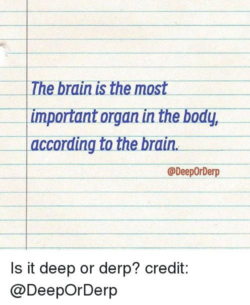 Derping: The brain is the most  Important organ in the body,  according to the brain  @DeepOrDerp Is it deep or derp? credit: @DeepOrDerp