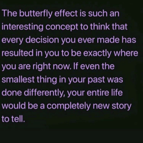 Life, Butterfly, and The Butterfly Effect: The butterfly effect is such an  interesting concept to think that  every decision you ever made has  resulted in you to be exactly where  you are right now. If even the  smallest thing in your past was  done differently, your entire life  would be a completely new story  to tell.