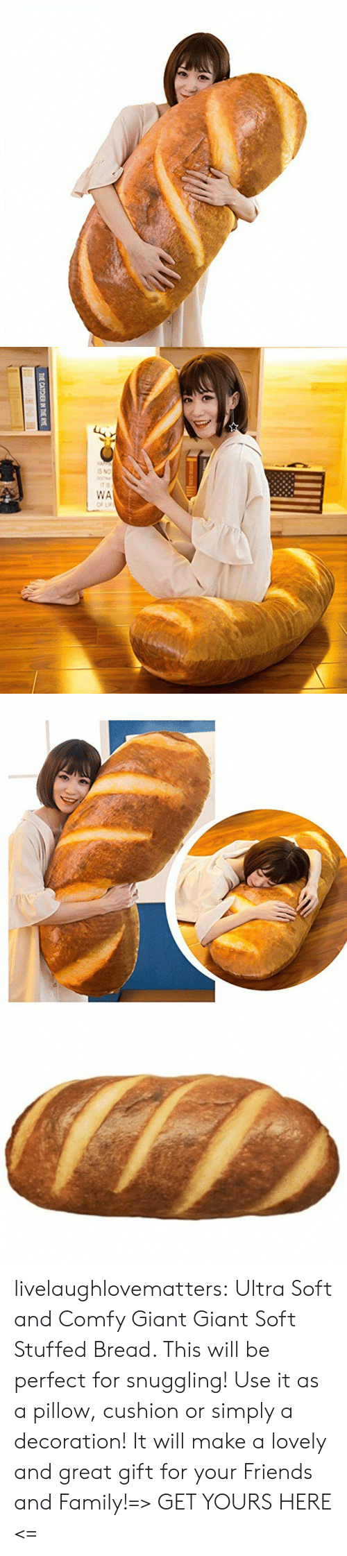 Decoration: THE CATCHER IN THE RYE livelaughlovematters:  Ultra Soft and Comfy Giant Giant Soft Stuffed Bread. This will be perfect for snuggling! Use it as a pillow, cushion or simply a decoration! It will make a lovely and great gift for your Friends and Family!=> GET YOURS HERE <=