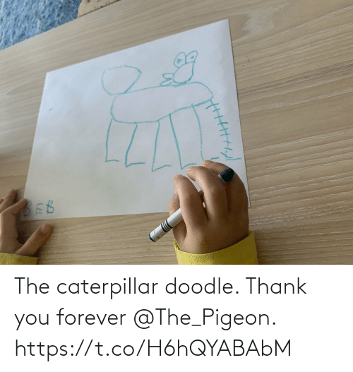 pigeon: The caterpillar doodle. Thank you forever @The_Pigeon. https://t.co/H6hQYABAbM