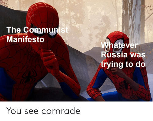 Trying To Do: The Communist  Manifesto  atev  er  ussia was  trying to do You see comrade