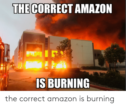 Amazon: the correct amazon is burning