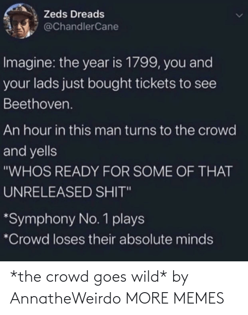 crowd: *the crowd goes wild* by AnnatheWeirdo MORE MEMES