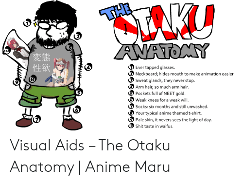 Anime, Glasses, and Hair: THE  CTANU  ANATOMY  Ever tapped glasses  Neckbeard, hides mouth to make animation easier.  Sweat glands, they never stop  Arm hair, so much arm hair.  Pockets full of NEET gold.  Weak knees for a weak will  Socks: six months and still unwashed  Your typical anime themed t-shirt.  Pale skin, it nevers sees the light of day.  Shit taste in waifus  (8 Visual Aids – The Otaku Anatomy | Anime Maru