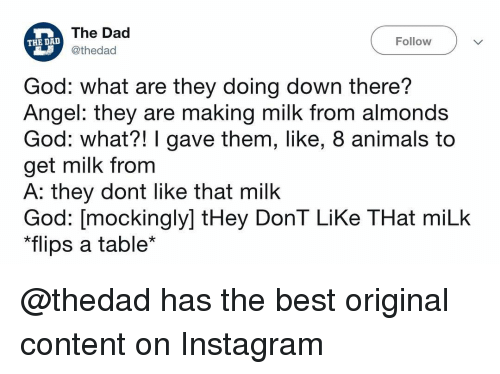 Animals, Dad, and God: The Dad  @thedad  THE DAL  Follow  God: what are they doing down there?  Angel: they are making milk from almonds  God: what?! I gave them, like, 8 animals to  get milk from  A: they dont like that milk  God: mockinglyl tHey DonT LiKe THat miLk  flips a table* @thedad has the best original content on Instagram