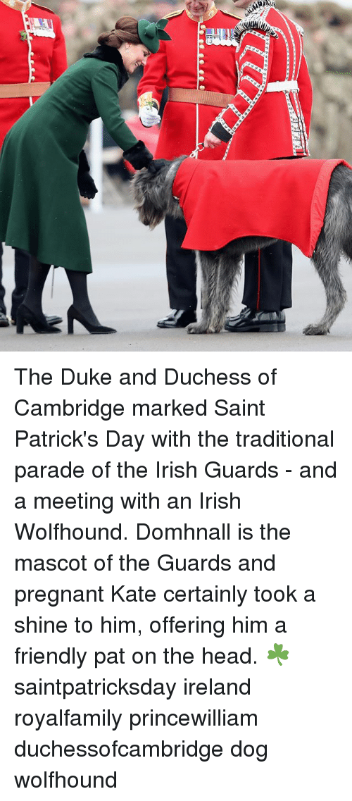 Head, Irish, and Memes: The Duke and Duchess of Cambridge marked Saint Patrick's Day with the traditional parade of the Irish Guards - and a meeting with an Irish Wolfhound. Domhnall is the mascot of the Guards and pregnant Kate certainly took a shine to him, offering him a friendly pat on the head. ☘️ saintpatricksday ireland royalfamily princewilliam duchessofcambridge dog wolfhound