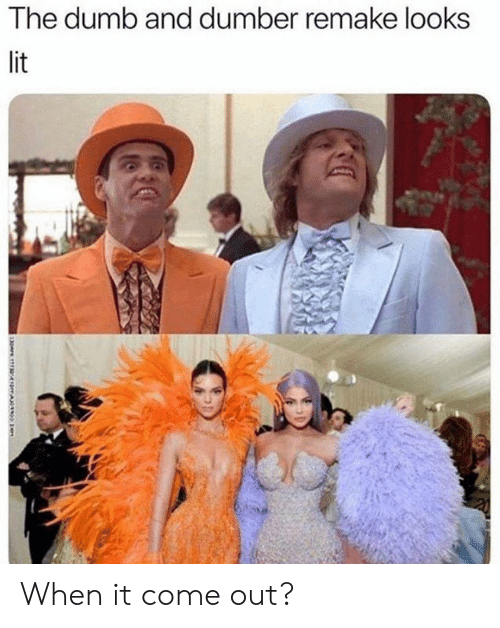 Dank, Dumb, and Lit: The dumb and dumber remake looks  lit When it come out?
