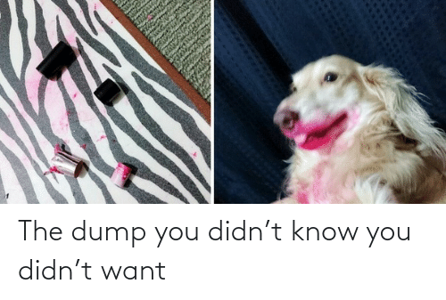 Know You: The dump you didn't know you didn't want