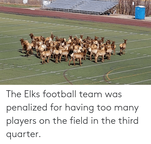 football team: The Elks football team was penalized for having too many players on the field in the third quarter.