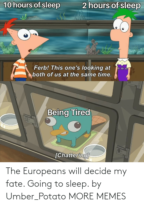 Potato: The Europeans will decide my fate. Going to sleep. by Umber_Potato MORE MEMES