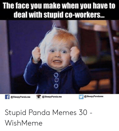 Wishmeme: The face you make when you have to  deal with stupid co-workers...  @SleepyPandame  SleepyPanda.me SleepyPanda.me Stupid Panda Memes 30 - WishMeme