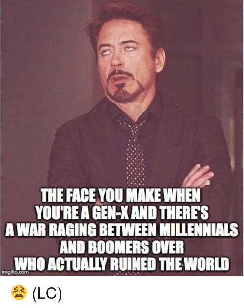 the face you make: THE FACE YOU MAKE WHEN  YOU'RE A GEN-X AND THERES  WAR RAGING BETWEEN MILLENNIALS  AND BOOMERS OVER  WHO ACTUALLY RUINED THE WORLD  A  Imgilip.com 😫 (LC)