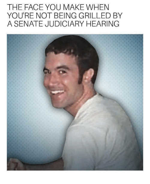the face you make: THE FACE YOU MAKE WHEN  YOU'RE NOT BEING GRILLED BY  A SENATE JUDICIARY HEARING