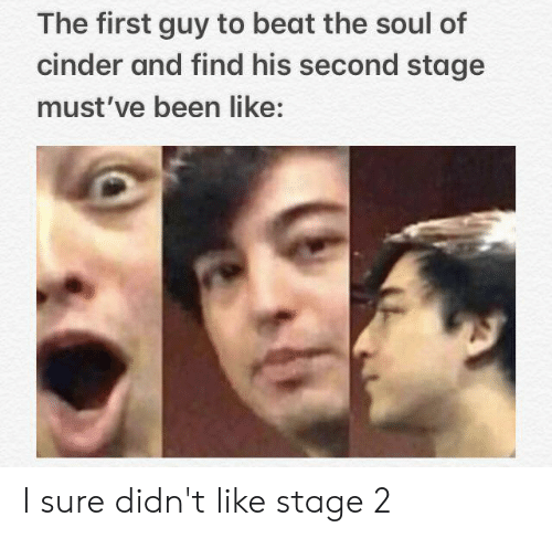 Reddit, Been, and Soul: The first guy to beat the soul of  cinder and find his second stage  must've been like: I sure didn't like stage 2