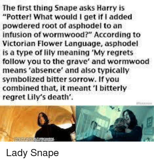 The First Thing Snape Asks Harry Is Potter! What Would I Get
