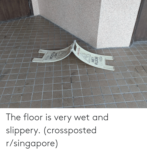 Floor: The floor is very wet and slippery. (crossposted r/singapore)