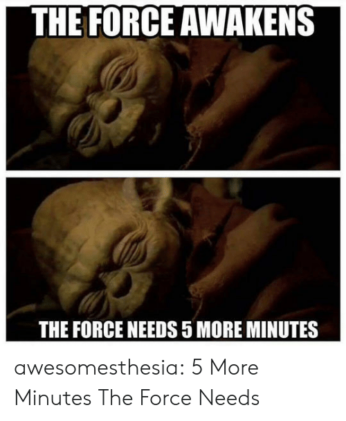 Tumblr, Blog, and Com: THE FORCE AWAKENS  THE FORCE NEEDS 5 MORE MINUTES awesomesthesia:  5 More Minutes The Force Needs