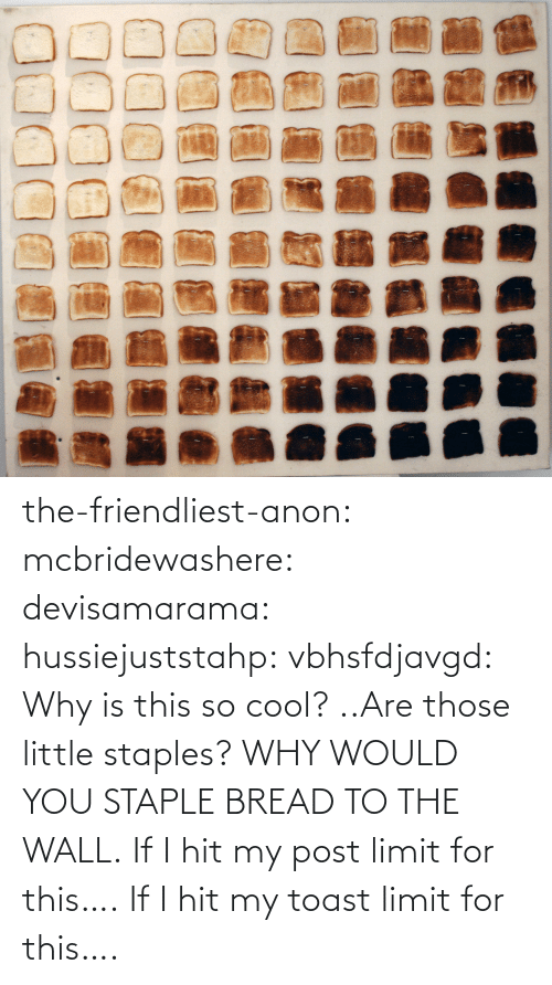 Post Limit: the-friendliest-anon:  mcbridewashere:  devisamarama:  hussiejuststahp:  vbhsfdjavgd:  Why is this so cool?  ..Are those little staples? WHY WOULD YOU STAPLE BREAD TO THE WALL.    If I hit my post limit for this….  If I hit my toast limit for this….