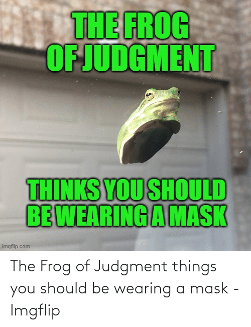imgflip: The Frog of Judgment things you should be wearing a mask - Imgflip
