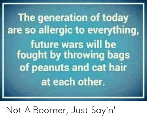 bags: The generation of today  are so allergic to everything,  future wars will be  fought by throwing bags  of peanuts and cat hair  at each other. Not A Boomer, Just Sayin'