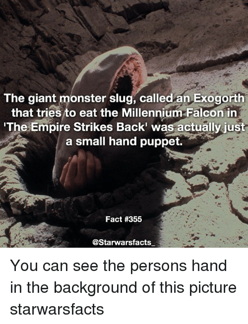 Slugs: The giant monster slug, called an Exogorth  that tries to eat the Millennium Falcon in  The Empire Strikes Back' was actually just  a small hand puppet.  Fact #355  @Starwarsfacts You can see the persons hand in the background of this picture starwarsfacts