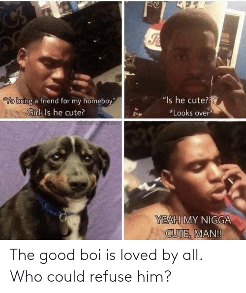 who: The good boi is loved by all. Who could refuse him?