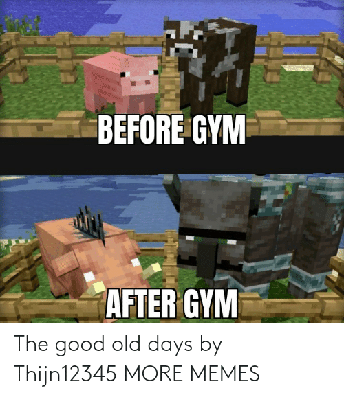 Old Days: The good old days by Thijn12345 MORE MEMES