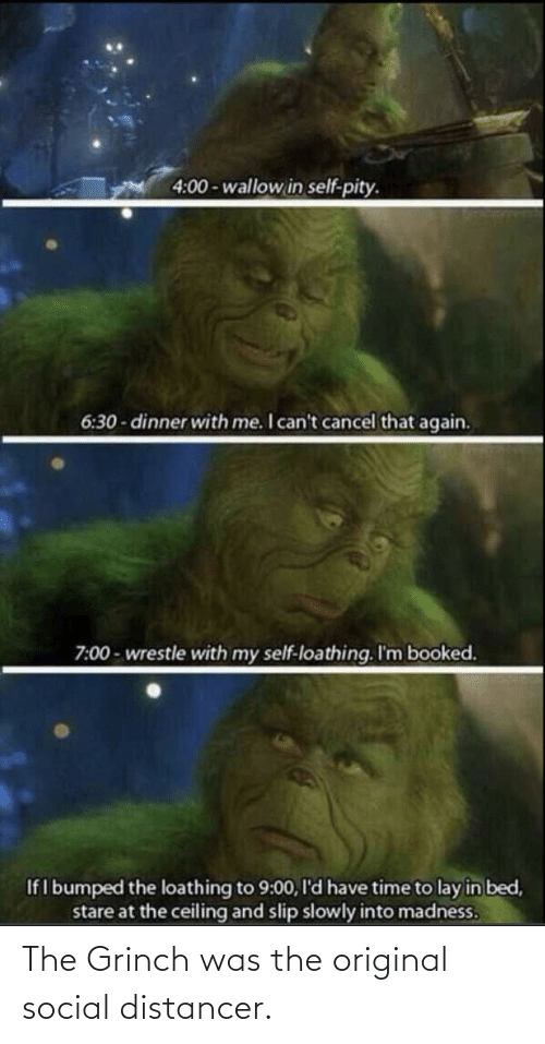 The Grinch: The Grinch was the original social distancer.
