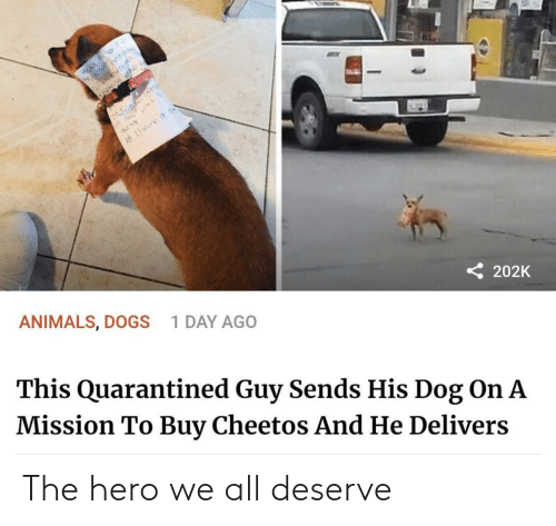 hero: The hero we all deserve