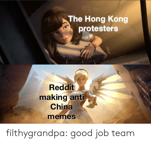 Memes, Reddit, and Tumblr: The Hong Kong  protesters  Reddit  making anti  China  memes filthygrandpa:  good job team