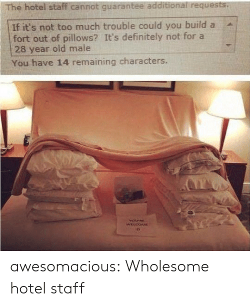 pillows: The hotel staff cannot quarantee additional requests.  If it's not too much trouble could you build a  fort out of pillows? It's definitely not for a  28 year old male  You have 14 remaining characters.  YOPRE  WELCOME awesomacious:  Wholesome hotel staff
