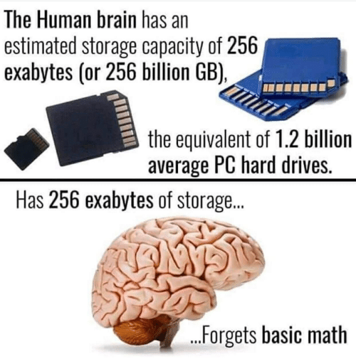 Brain, Math, and Human: The Human brain has an  estimated storage capacity of 256  exabytes (or 256 billion GB),  the equivalent of 1.2 billion  average PC hard drives.  Has 256 exabytes of storage...  ...Forgets basic math