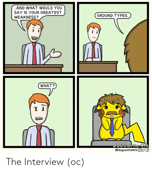interview: The Interview (oc)