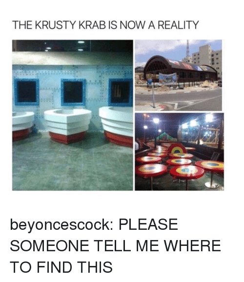 Target, Tumblr, and Blog: THE KRUSTY KRAB IS NOW A REALITY beyoncescock: PLEASE SOMEONE TELL ME WHERE TO FIND THIS