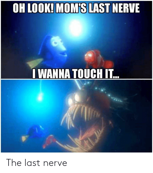 The: The last nerve