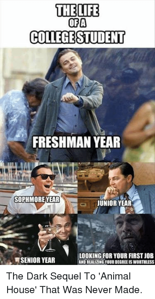Freshman Year: THE LIFE  OFA  COLLEGESTUDENT  FRESHMAN YEAR  SOPHMORE YEAR  JUNIOR YEAR  SENIOR YEAR  LOOKING FOR YOUR FIRST JOEB  AND REALIZING YOUR DEGREE IS WORTHLESS The Dark Sequel To 'Animal House' That Was Never Made.