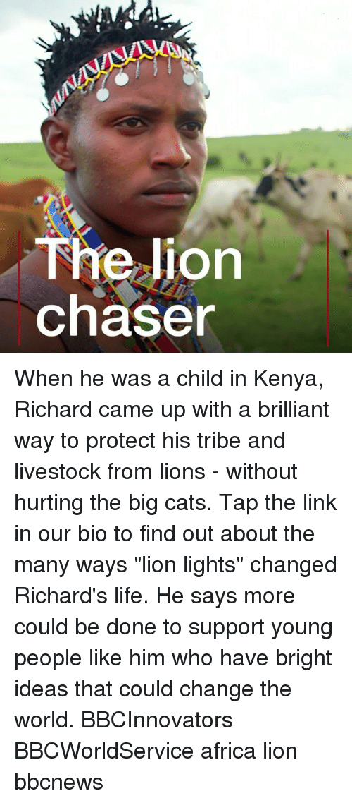 """Africa, Cats, and Life: The lion  chaser When he was a child in Kenya, Richard came up with a brilliant way to protect his tribe and livestock from lions - without hurting the big cats. Tap the link in our bio to find out about the many ways """"lion lights"""" changed Richard's life. He says more could be done to support young people like him who have bright ideas that could change the world. BBCInnovators BBCWorldService africa lion bbcnews"""